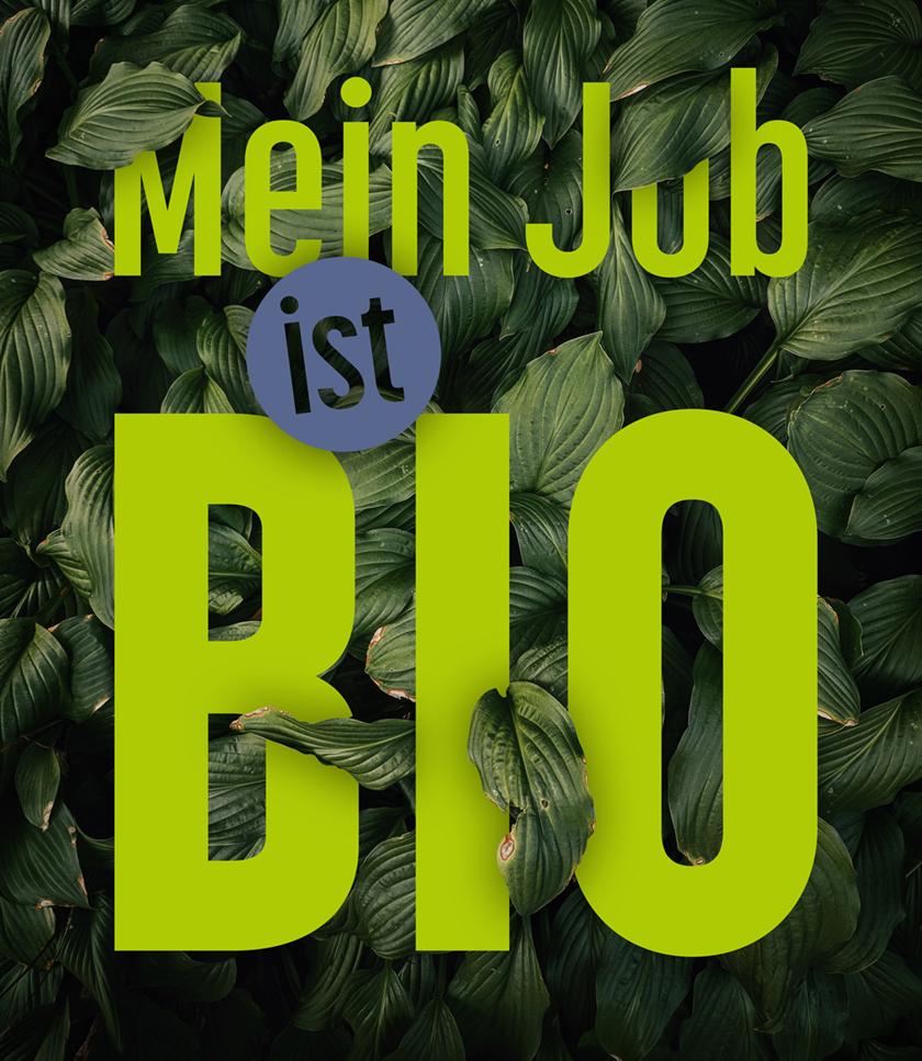 Samt&Seidel_Referenz_BioSeehotel_mein job ist bio_Design_01